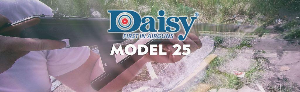 daisy model 25